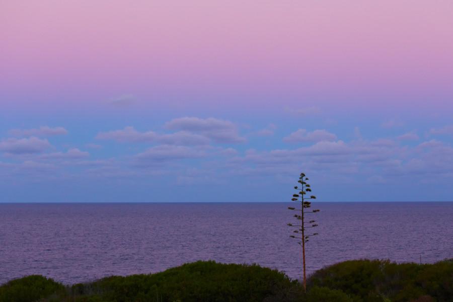L'ombra della Terra e il delicato colore rosa della Cintura di Venere.