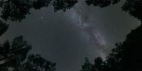 Scorcio di cielo nella pineta di La Palma.